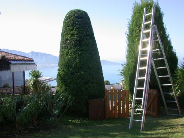 Artisan paysagiste cr ation et entretien de jardin aix for Entretien jardin 13
